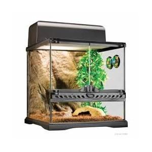 Exo Terra Kit Invertebrados PT2654