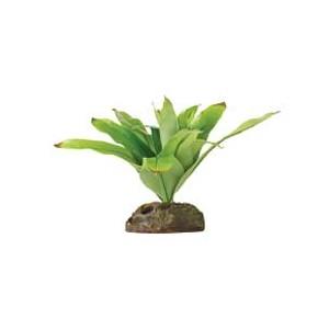 Smart Plant Peq (Bromelia) PT2977