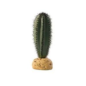 CactusSaguaro PT2981