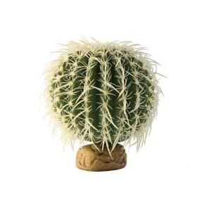 CactusBarrilGrande PT2985