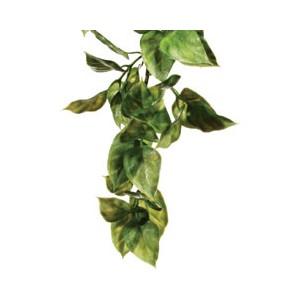 PlantaPlasticaAmapallo-Med. PT3011