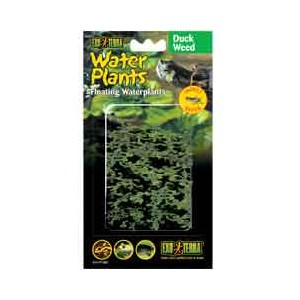 PlantasFlotantesLenteja de Agua15cm PT3061